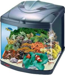 Освещение аквариума лампами люминесцентными