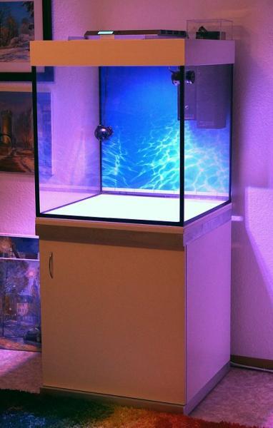 Как защитить лампу в аквариуме от конденсата
