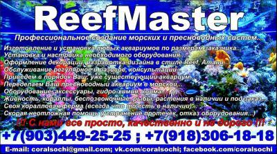 post-25000-0-92096600-1387694755_thumb.jpg