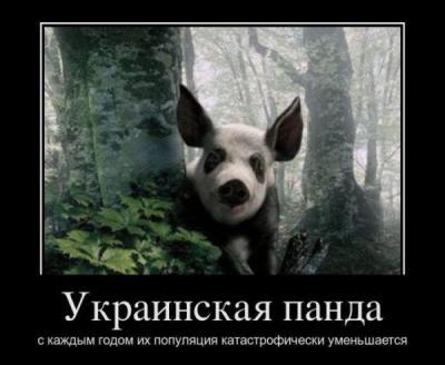 post-1339-1327527405_thumb.jpg