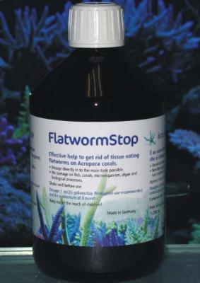_flatwormstop1.jpg