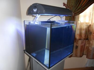 Как сделать бесшумный аквариум