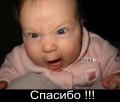 post-404-1126156313.jpg