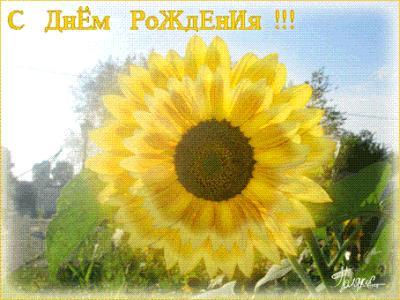 post-585-1300089277_thumb.jpg