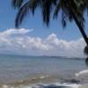 Море в 80 литрах(Aqua Medic Blenny) - последнее сообщение от Денис_А