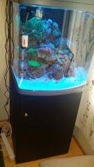 sera Marine Biotop Cube 130 LED ночное освещение