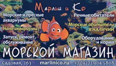 post-29897-0-30957100-1415193684_thumb.jpg