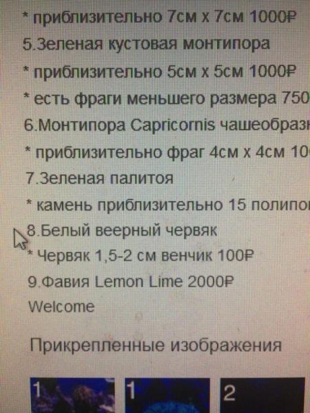 post-29954-0-02628000-1510732748_thumb.jpg
