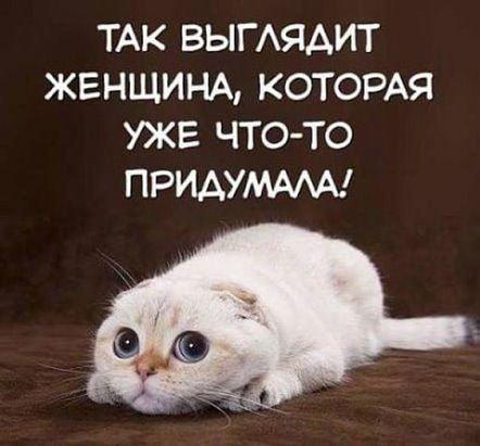 IMG_20181102_113803.jpg